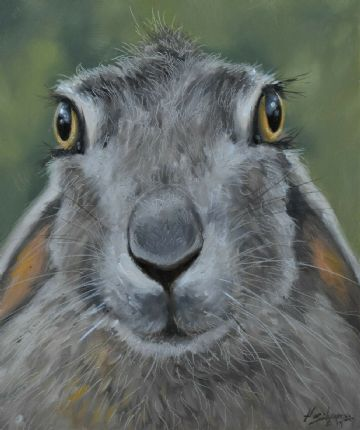 John Silver Original Oil Painting Portrait Of A Hare